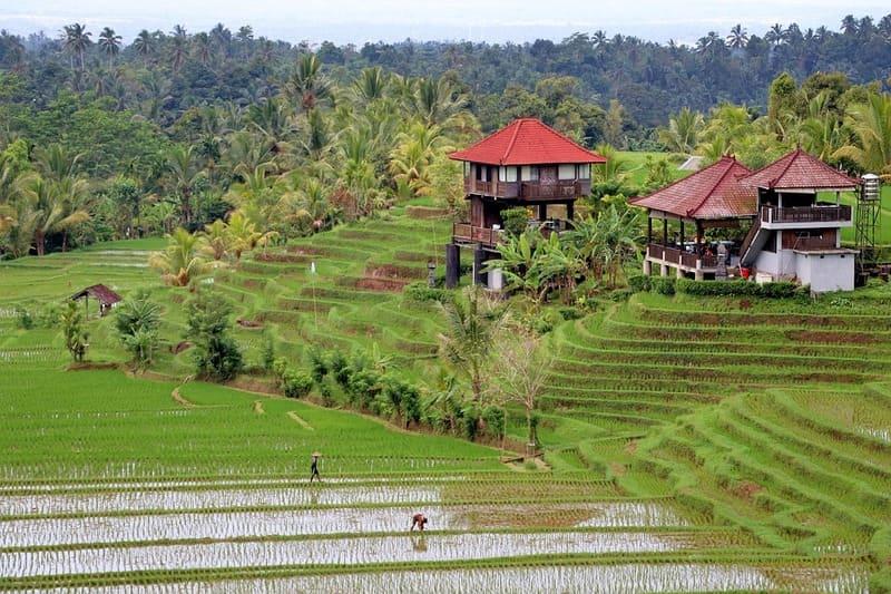 Voyager à Bali, ce n'est pas compliqué ! Suivez nos conseils ;)